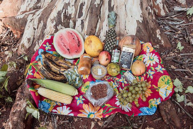 Feira do MST derruba mito: comida boa, barata e sem veneno