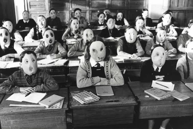 Dalva Garcia: Reforma do ensino médio visa diminuir desigualdades ou é mistificação das massas?