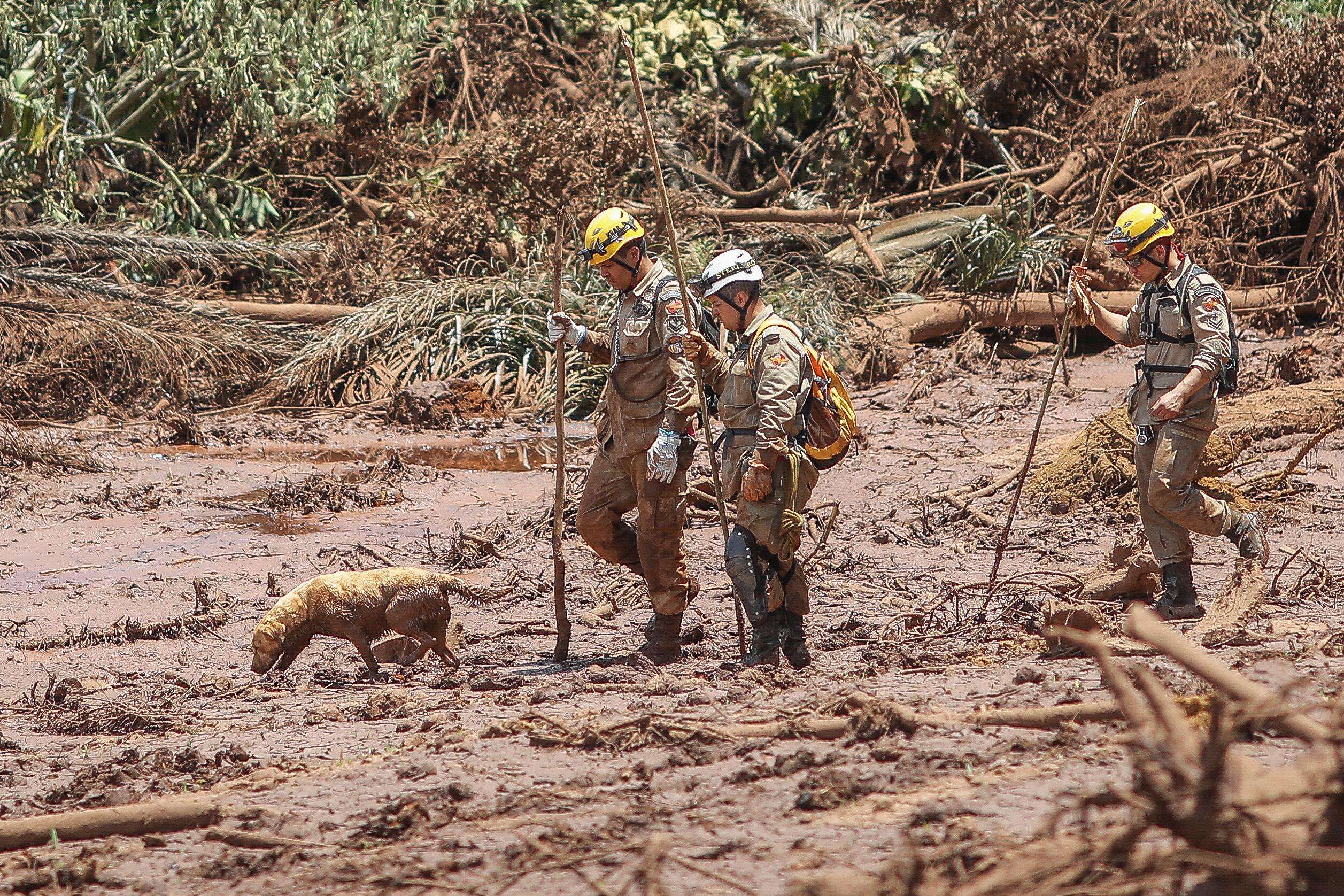 Paulo Metri: Lucrar não é proibido nem errado; o inaceitavel é obter maior lucro com um mar de lama
