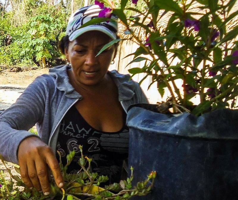 MAB lança documentário em homenagem a militante morta há um mês no Pará