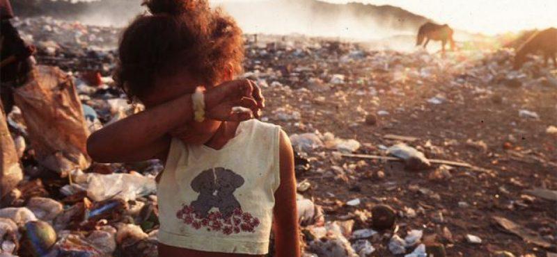 Tereza Campello: Bolsonaro deveria ir às ruas para ver pessoas catando comida no lixo