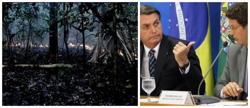 José Eustáquio Diniz: Brasil é o país que mais mata ativistas e desmata florestas no mundo
