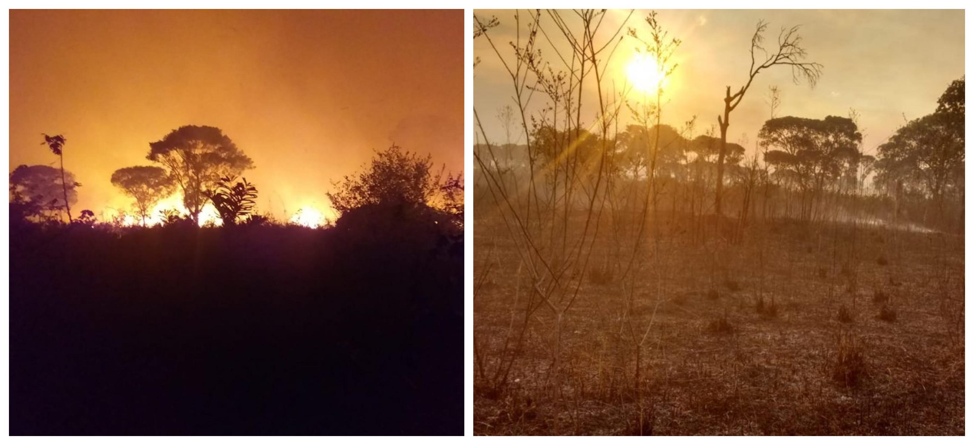 Cimi denuncia: Focos de incêndio em terras indígenas aumentaram 88% em 2019