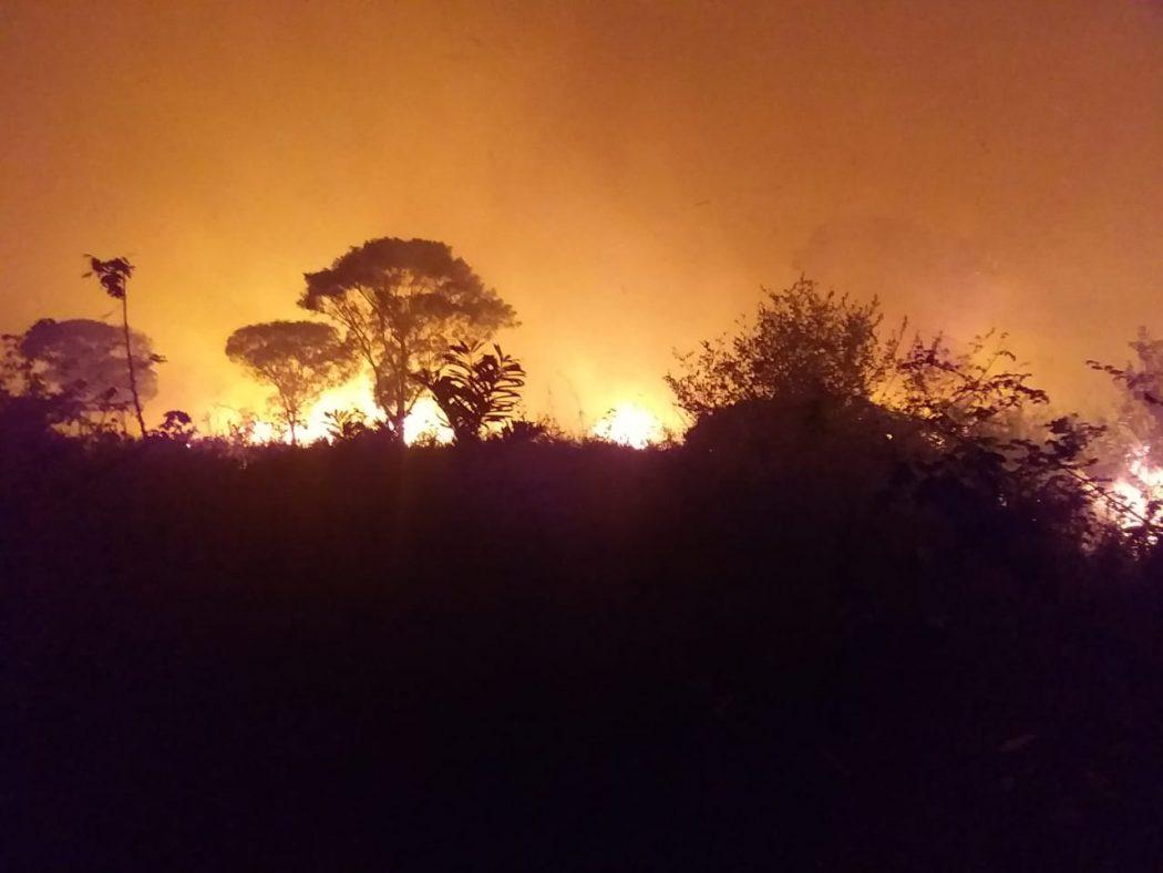 Estudo coordenado pela Fiocruz alerta: Queimadas na Amazônia aumentam internações e mortes de crianças, causando forte impacto no SUS