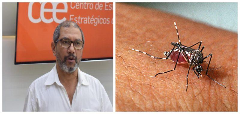 Pesquisador da Fiocruz alerta: Até dezembro, Brasil pode superar os 2 milhões de casos de dengue