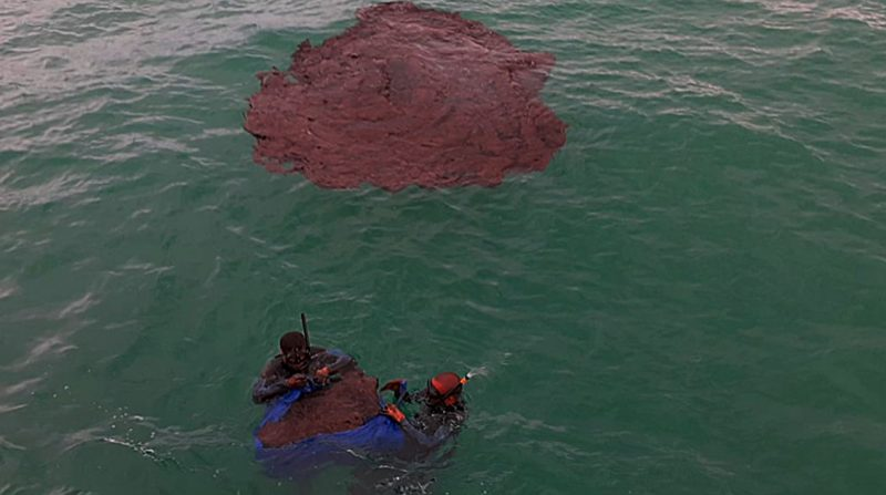 Leilão do pré-sal vai adiante com óleo nas praias do Nordeste, com o Supremo, com tudo — promete o governo Bolsonaro