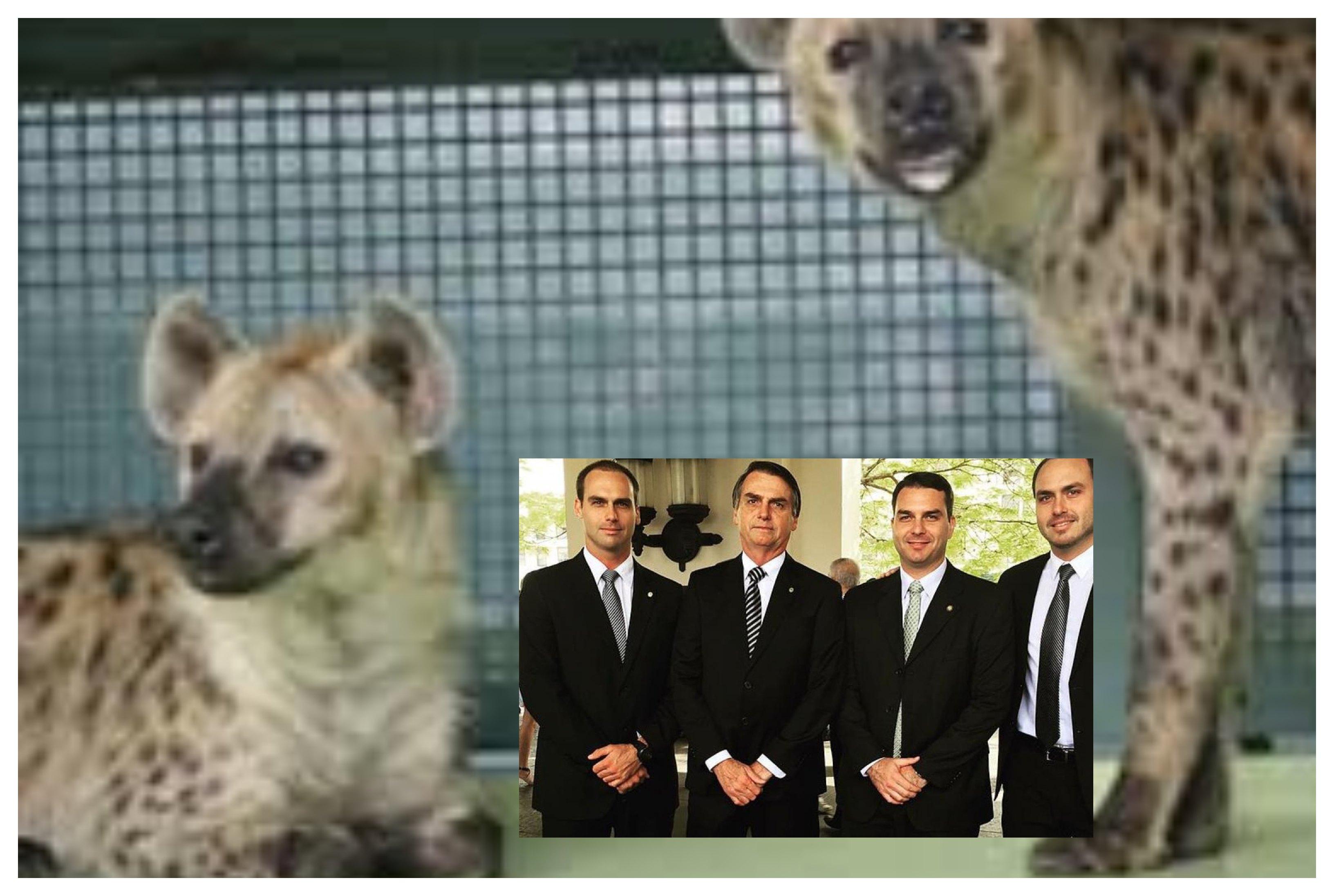 Lula, as hienas que estão no comando do País é que deveriam estar na jaula!