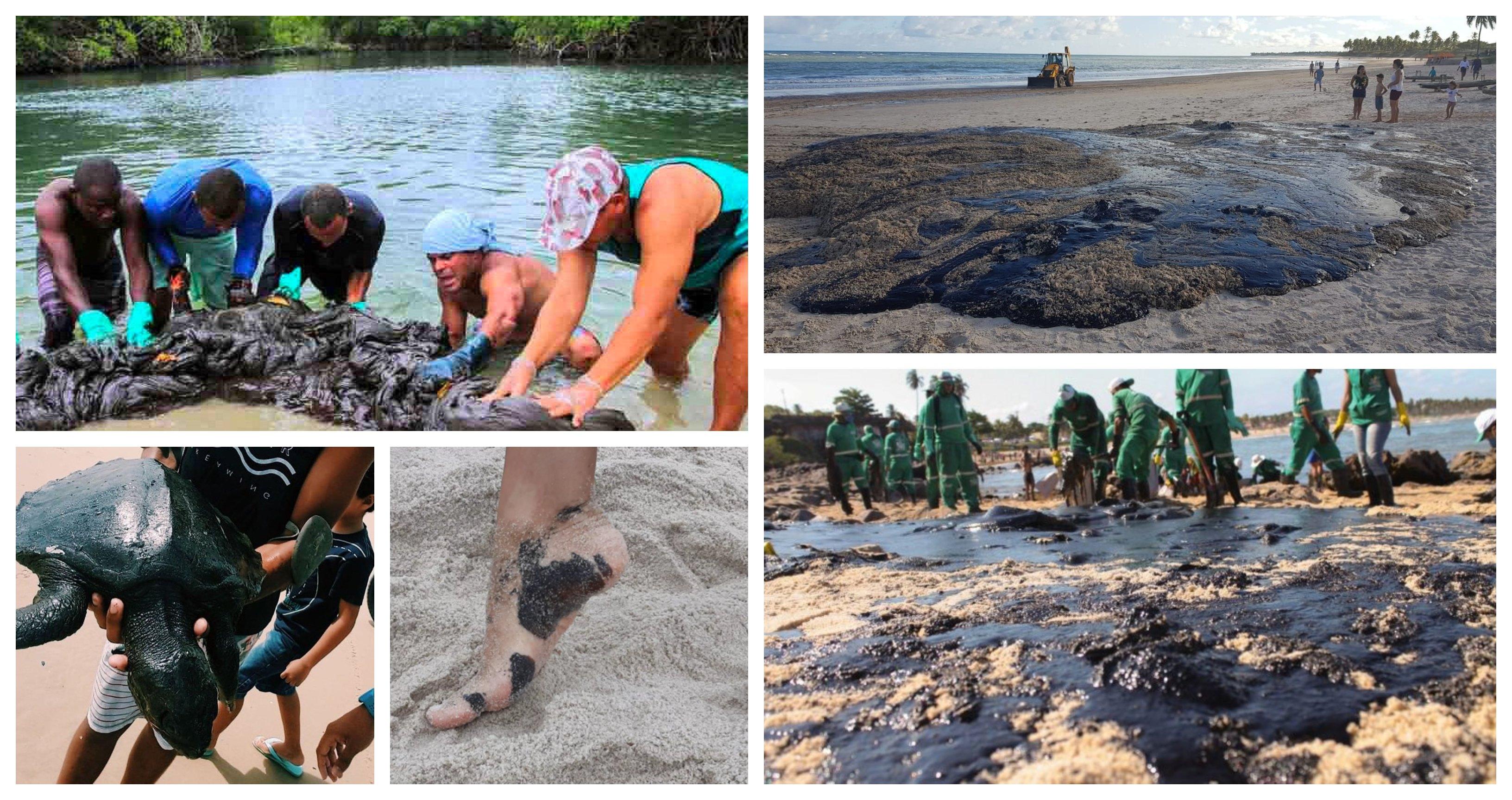 Óleo nas praias do Nordeste: Diante dos perigos, Fiocruz defende estado de emergência em saúde pública