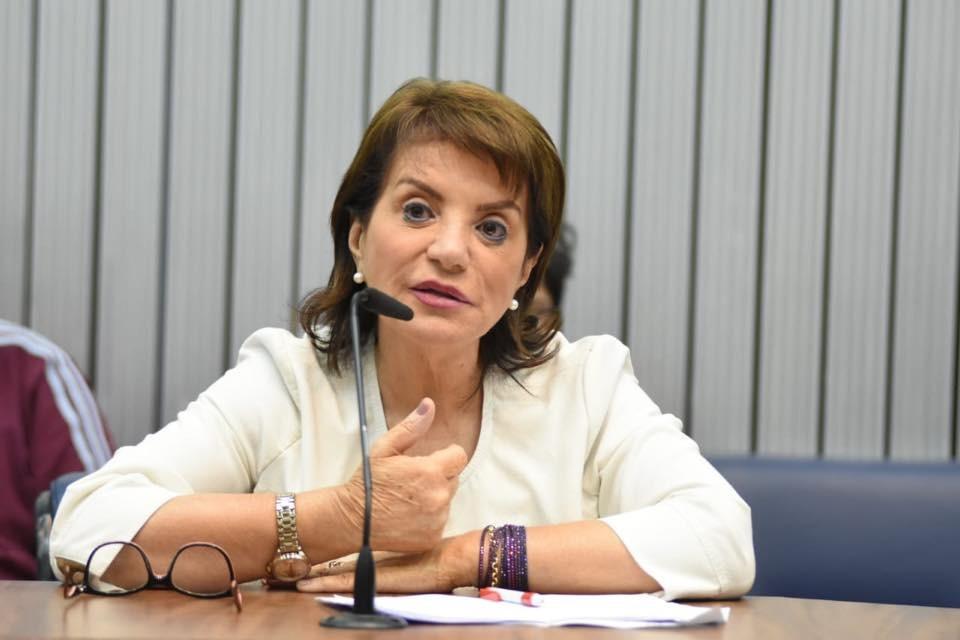 Professora Bebel alerta: Fim da lei do Fundeb será o desmonte de toda a educação básica no Brasil
