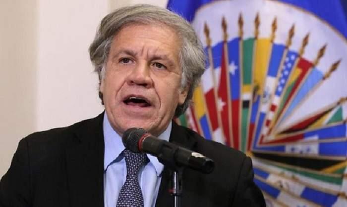 Jeferson Miola: Onde está o canalha da OEA, que sumiu após fraudar informe para viabilizar golpe na Bolívia?