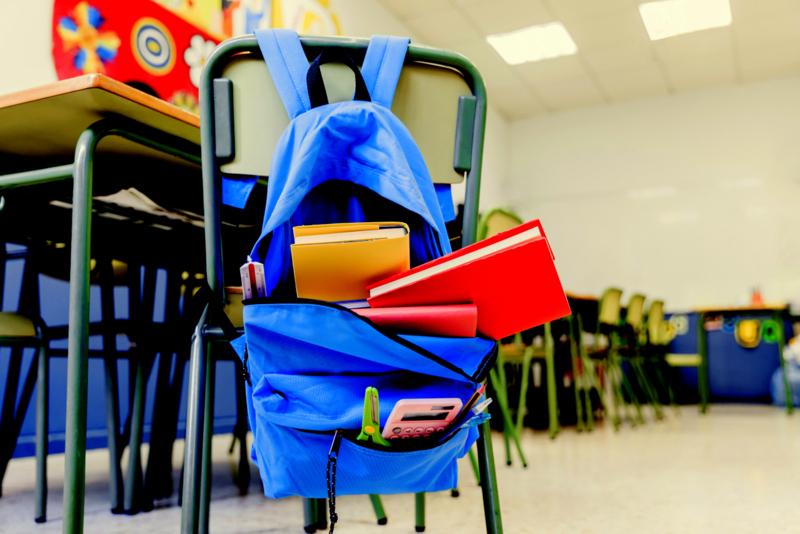 Juliana Cardoso: Ensino em casa, mais um ataque à escola pública e à cidadania plena