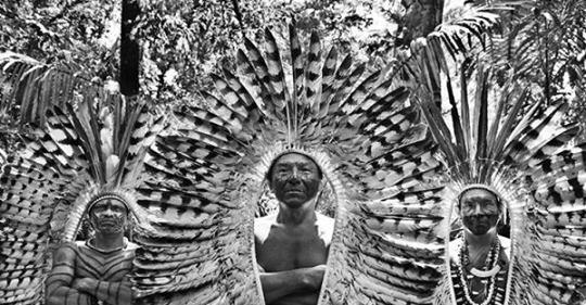 Sebastião e Lélia Salgado fazem apelo: Ajude a proteger os povos indígenas do Brasil da covid-19; vídeo e abaixo-assinado