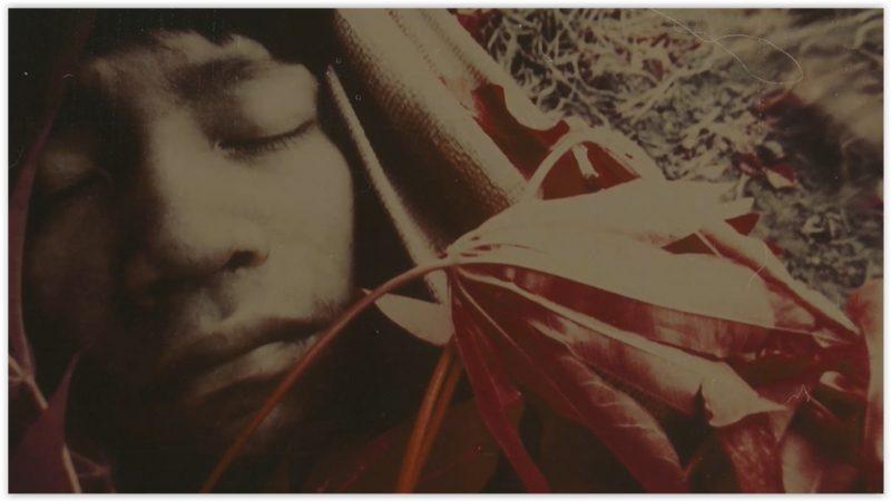 Ajude a evitar o genocídio Yanomami! Apoie a campanha #ForaGarimpoForaCovid; vídeo