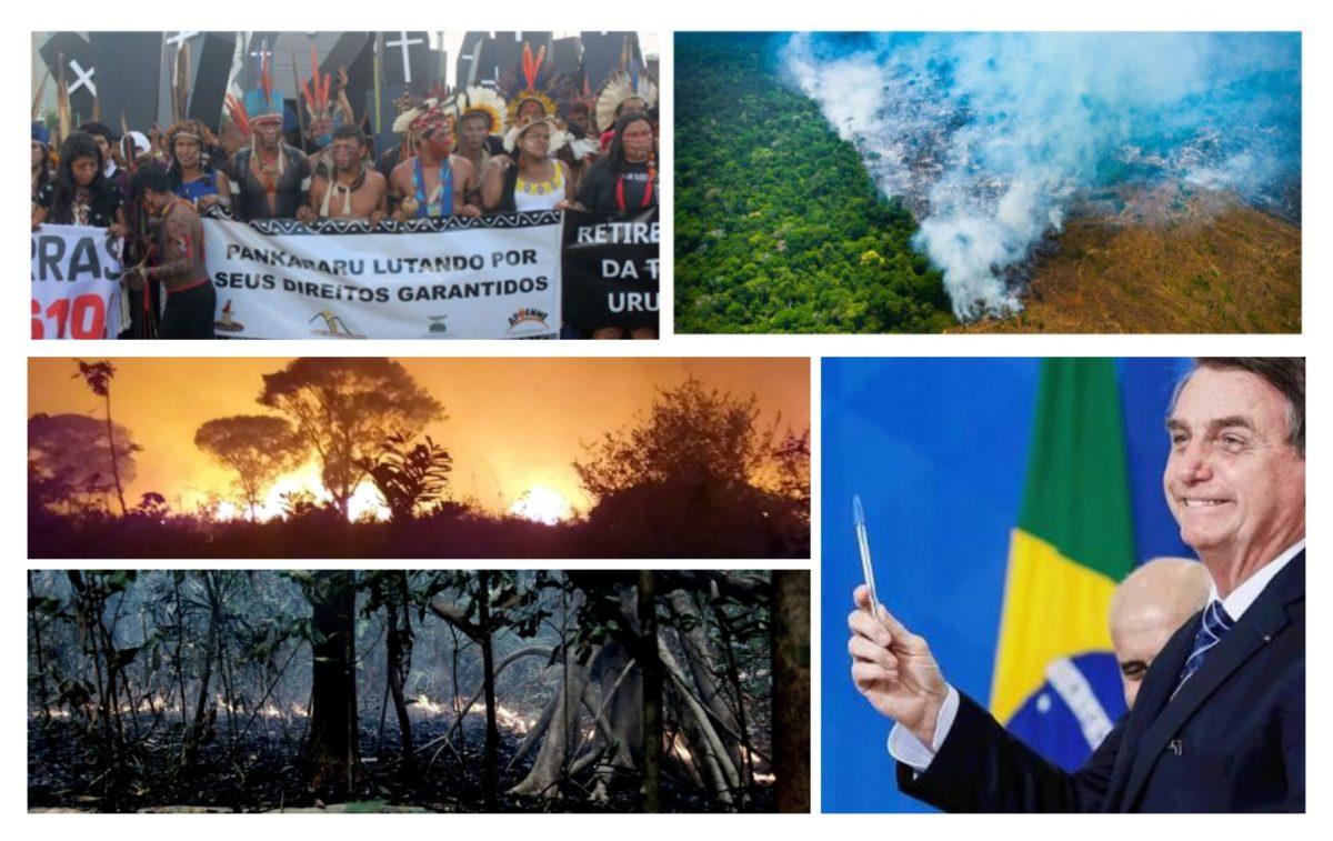 Dr. Rosinha: Para manter o lucro, donos do capital destróem e matam; enquanto Bolsonaro ficar, isso só aumentará