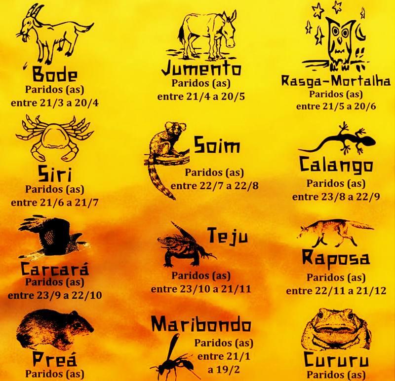 Você sabe qual é o seu signo no horóscopo nordestino? Descubra