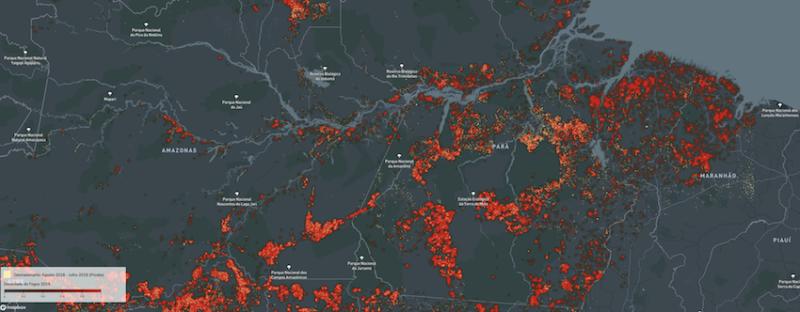 Cortina de Fumaça: 72% dos focos de incêndio na Amazônia foram em propriedades médias e latifúndios; veja como Bolsonaro mentiu