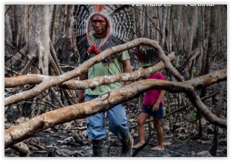 Cimi lança relatório anual de violência contra os povos indígenas; vídeo