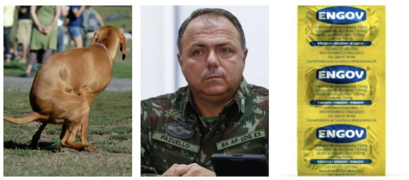 Freixo age para evitar que general Pazuello trate ressaca com cloroquina e cão com dor de barriga tome 20 comprimidos/dia