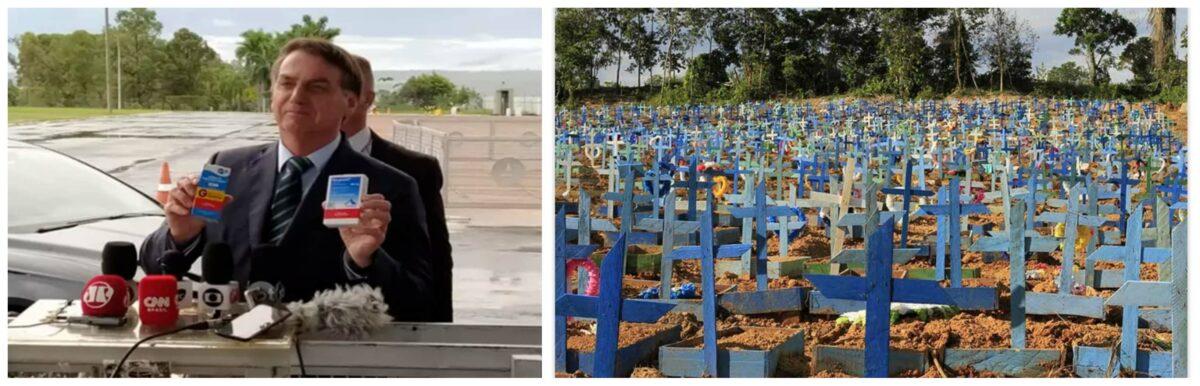 Eliara Santana: Pesquisa XP mostra que pandemia sem controle e desastre na economia abalam o governo do Zé ninguém