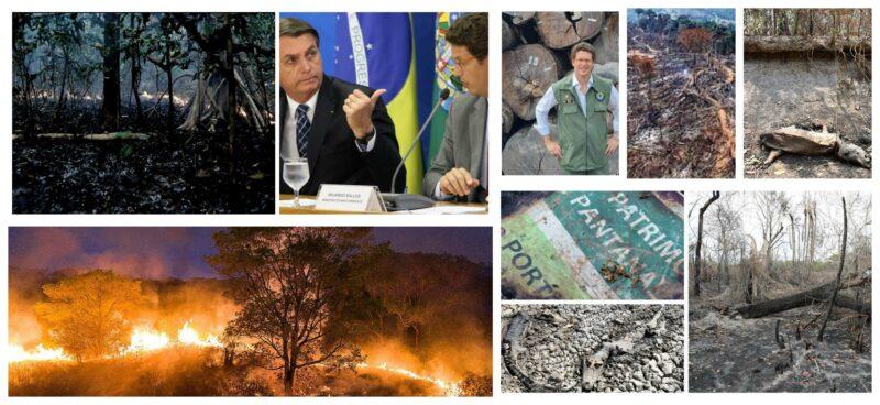 Bohn Gass: No Dia do Meio Ambiente, a natureza pede socorro pela devastação criminosa no Brasil