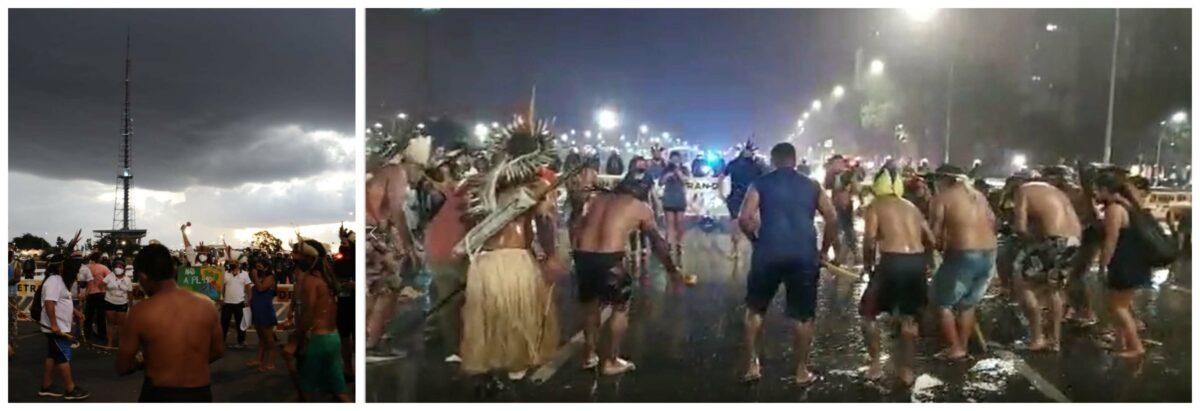 """Tânia Mandarino: """"Que não se duvide da força ancestral dos indígenas em conexão com a natureza""""; vídeo"""